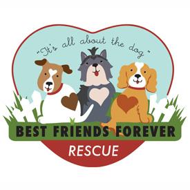 bff rescue logo