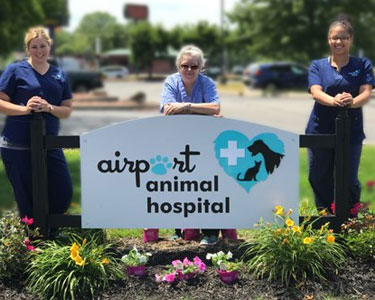 Team members pose by Airport Animal Hospital logo sign with colorful Summer flowers